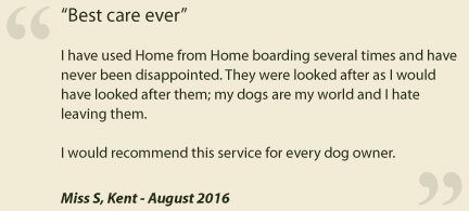 Home from Home - Testimonial